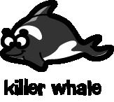 illustration of a cartoon killer whale
