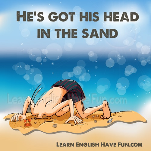 Head in the sand is to ignore or avoid a problem or situation