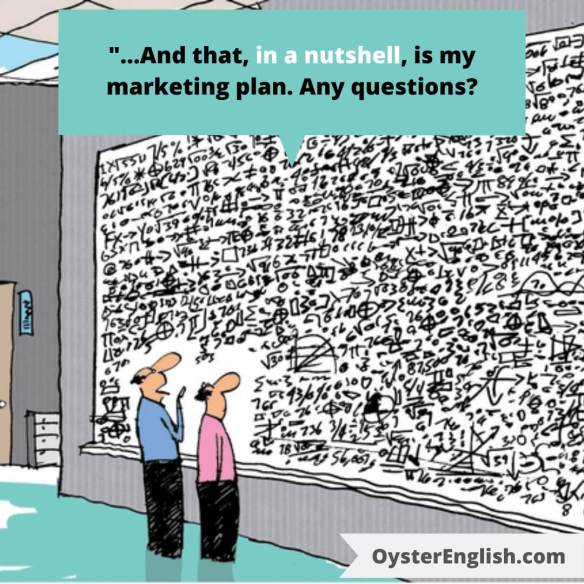 Cartoon of two businessmen standing in front of an enormous whiteboard that has an extremely complex formula. Caption: And that, in a nutshell, is my marketing plan. Any questions?
