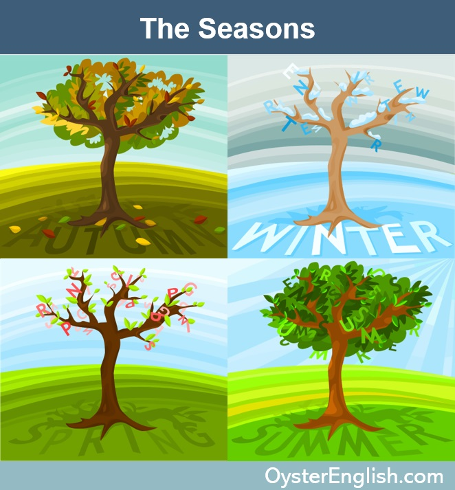 Image with 4 trees illustrating the four seasons, no leaves (winter), colored leaves on ground (fall), full leaves (summer), icicles on branches (winter)