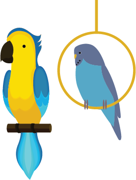 picture of a parrot and a bird