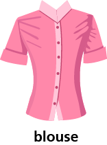 illustration of a blouse