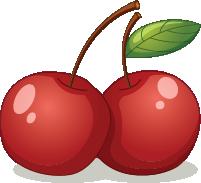 Illustration of cherries