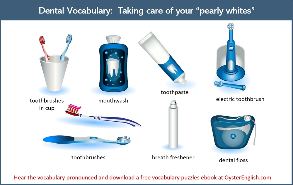 Collection of five dental vocabulary words. The heading says