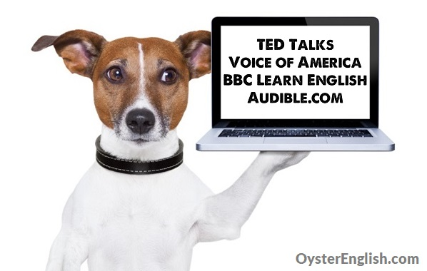 A dog holds a laptop that says: TED Talks, Voice of America, BBC Learn English, Audible.com