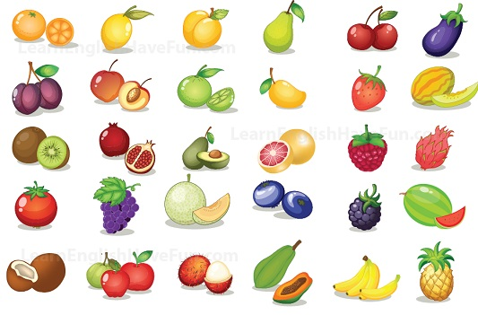 learn english fruit vocabulary cherries clip art svg cherry clip art owls