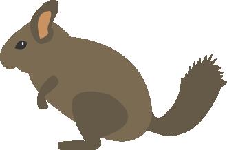 Illustration of a gerbil