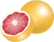Illustration of a grapefruit