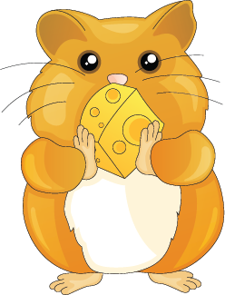 Illustration of a hamster