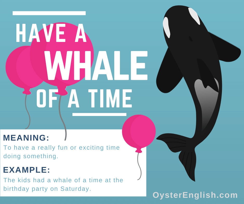 An image of a whale swimming in blue sea with pink balloons and the definition and a sentence example of the idiom