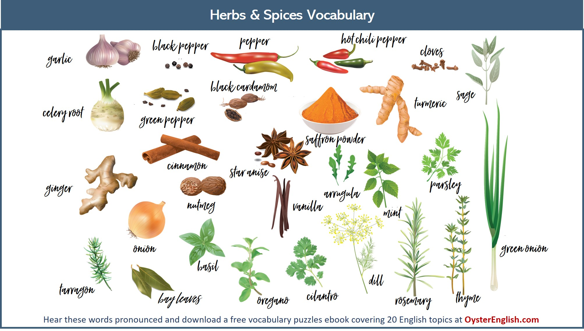 A collection of the illustration of the herbs and spices listed on this page.