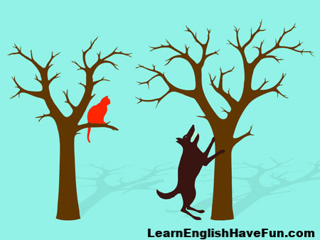 Idiom: Barking up the wrong tree (meaning & examples)