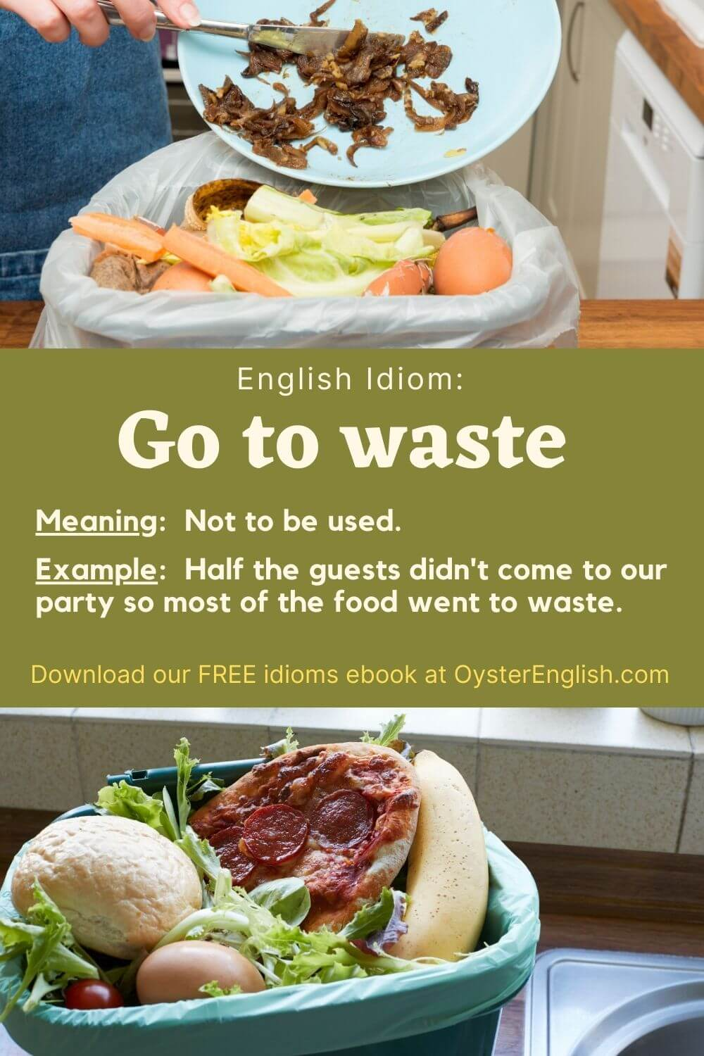 Pictures of perfectly good food in trash bins: Half the guests didn't come to our party so most of the food went to waste.
