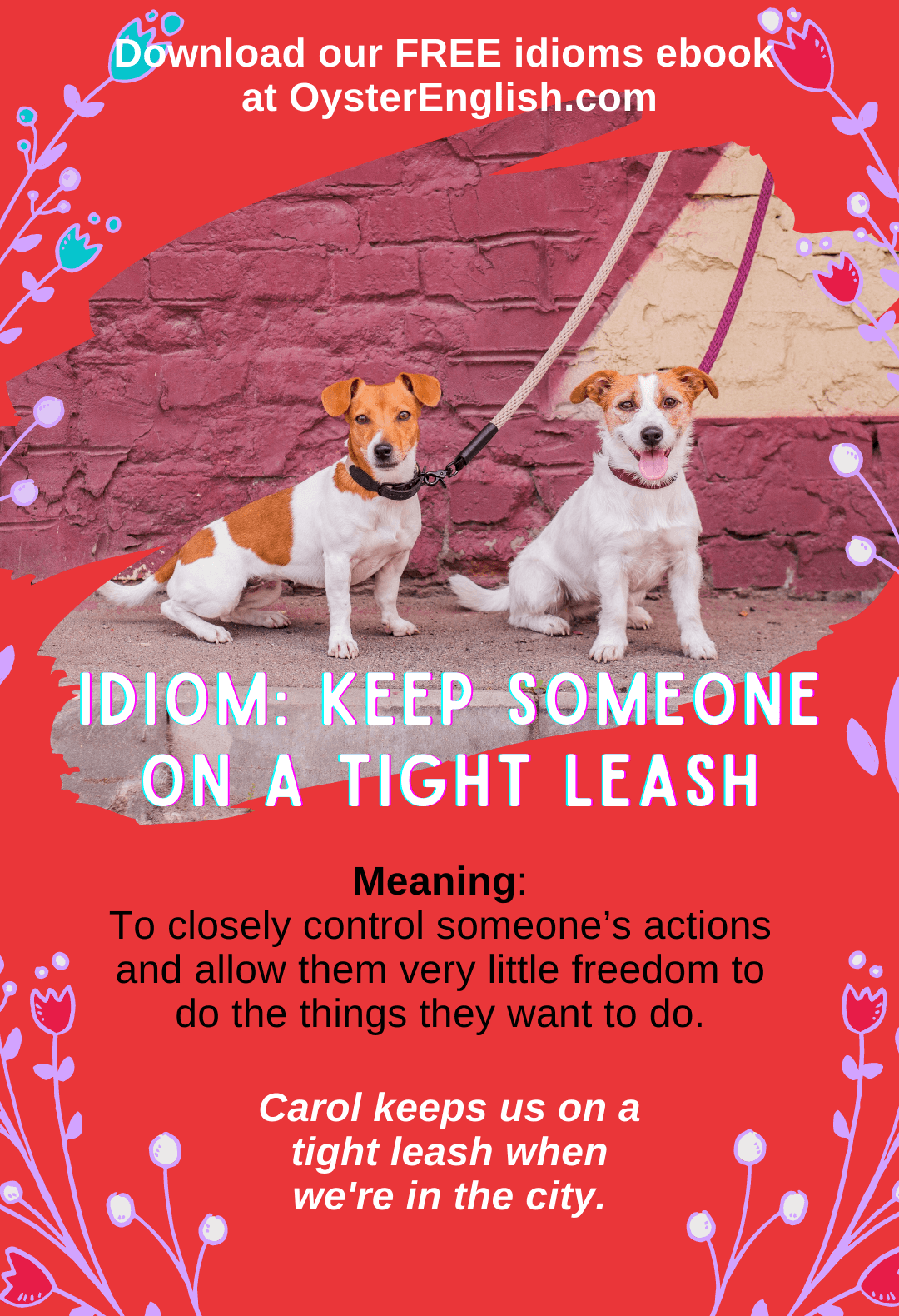 Two dogs are sitting outside and are tied up with leashes so they can't wander away: Carol keeps us on a tight leash when we're in the city.
