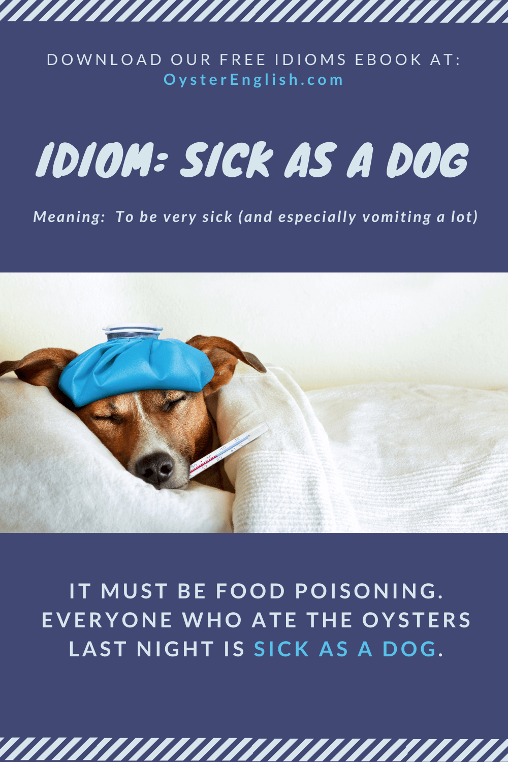 Picture of a sick dog in a bed with a water bottle on its head and a thermometer in its mouth. Example: It must be food poisoning. Everyone who ate the oysters last night is sick as a dog.