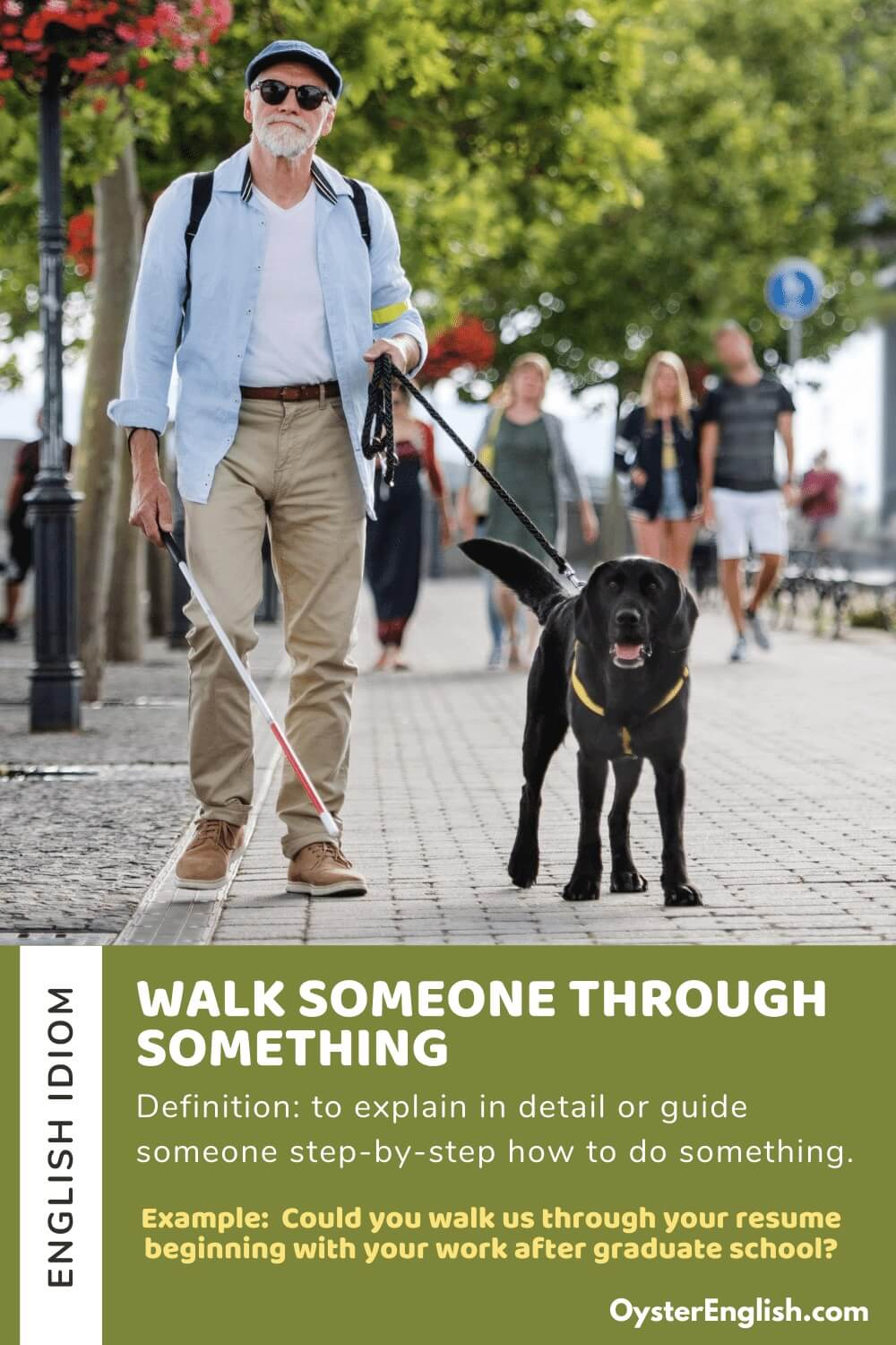 Guide dog is leading a blind man down the street with example and definition of idiom