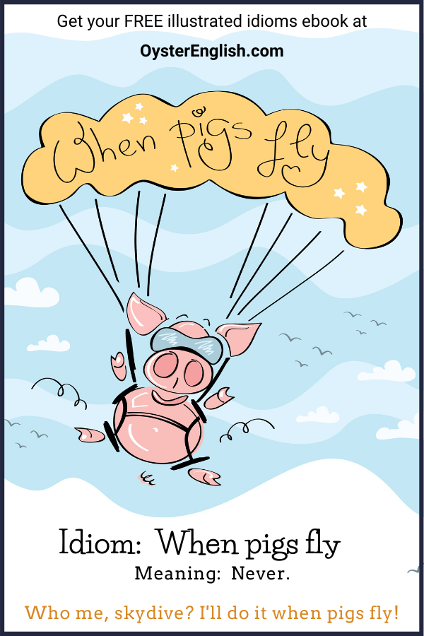 Cartoon pig skydiving with a parachute. Caption: Who me, skydive? When pigs fly!