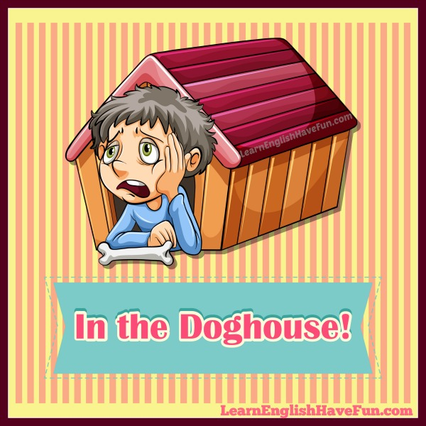 Meaning Of In Someone S Dog House