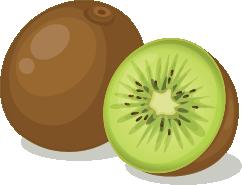 Illustration of a kiwi