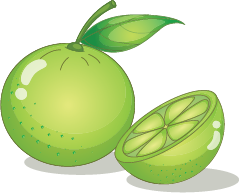 Illustration of a lime