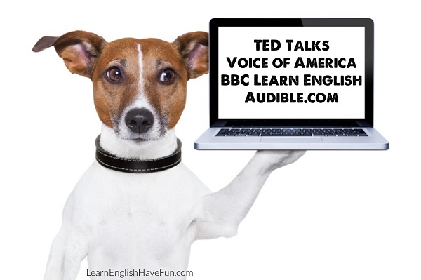 Jack Russell dog holding up a laptop with writing on screen: Ted Talks, Voice of America, BBC Learn English, Audible.com