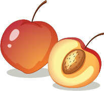 Illustration of a peach