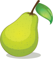 Illustration of a pear