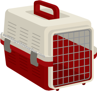 Image of an empty plastic pet carrier with a wire door