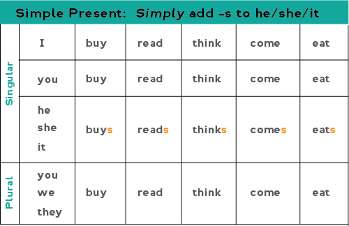 Chart showing how to form the present simple for regular verbs