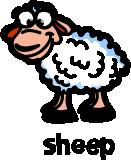 illustration of a cartoon sheep