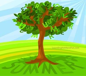 Tree full of green leaves illustrating the summer season.