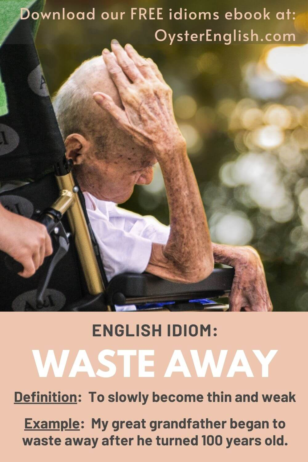 A very thin elderly man in a wheelchair: My great grandfather began to waste away after he turned 100 years old.