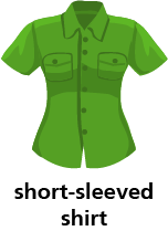 illustration of a short-sleeved shirt