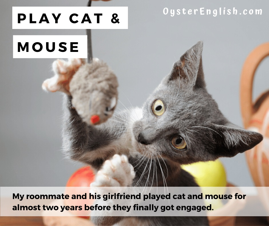 Cat playing with a toy mouse, illustrating the idiom