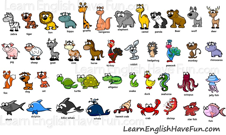 Image of 43 English animals vocabulary names.