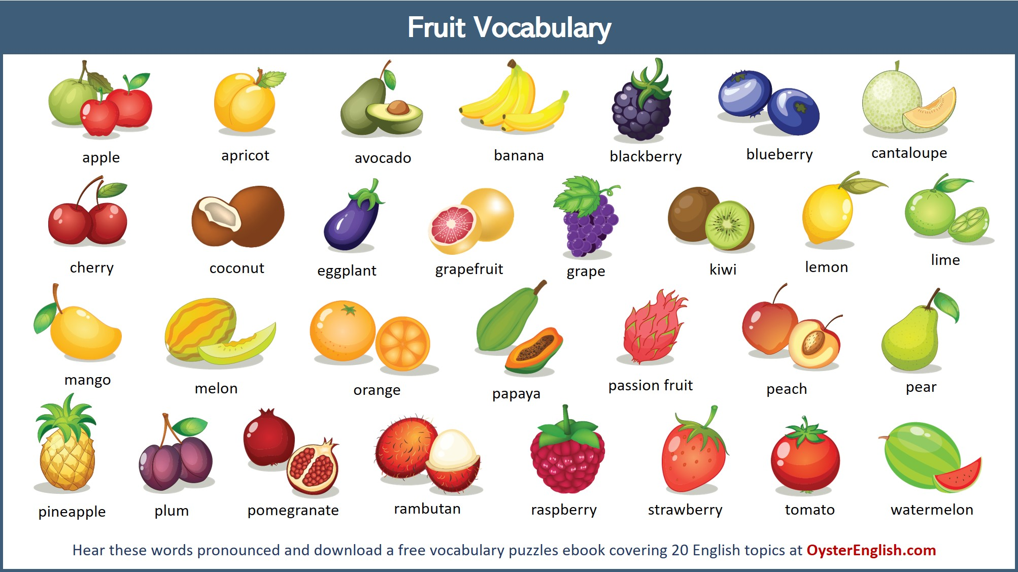 A collection of all of the different types of fruit illustrations featured on this page.
