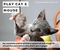 Thumbnail image: Play cat and mouse